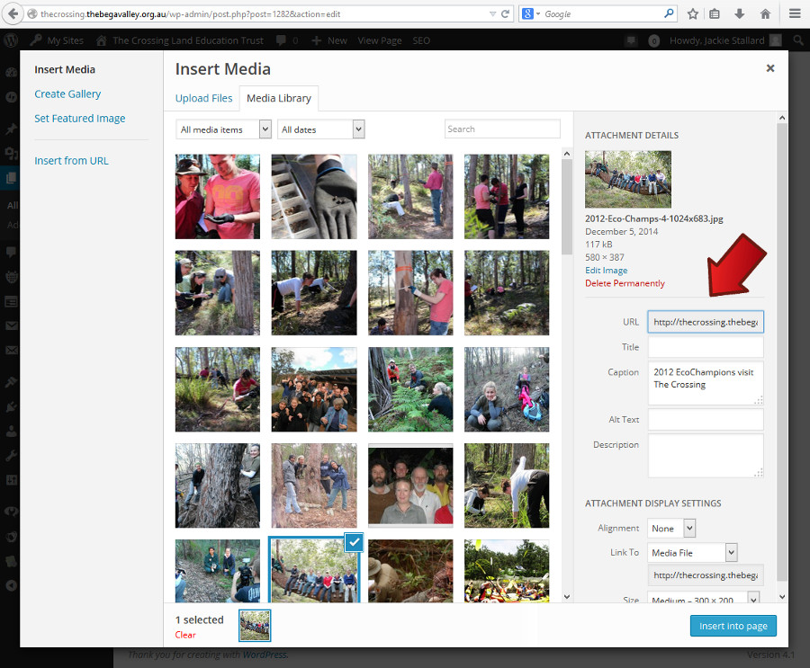 Select image options in the right hand column - Adding a picture in WordPress - Webhive - Web Design Batemans Bay, Moruya, Narooma, Tilba, Cobargo, Bega