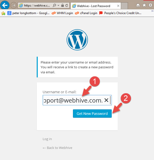 How to change your WordPress password - Enter your username or password