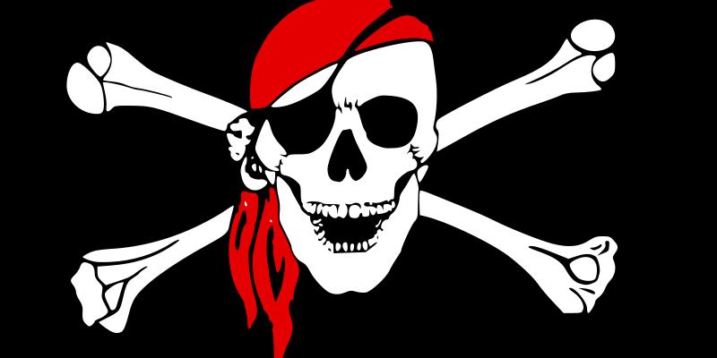 Skull and Crossbones - Wordpress website security
