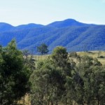 Profile picture of Bemboka Landcare Group
